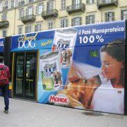Campagna Monge mezzi pubblici